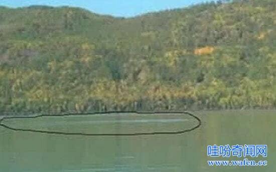 新疆喀纳斯湖水怪