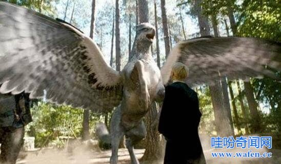 鹰头马身有翼兽