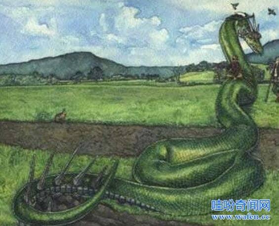 蛇发女妖美杜莎