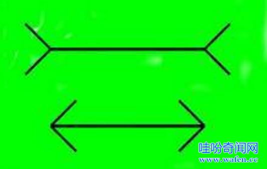 缪勒莱尔错觉的形成原因