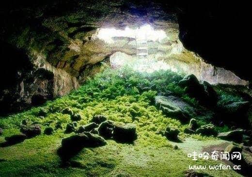 印尼爪哇谷洞
