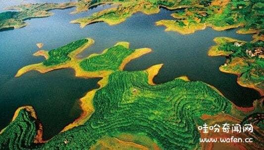 地球之肾是指哪里,面积近占地球6%/为20%已知物种提供生存环境