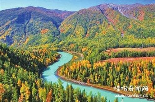 原始森林为什么不敢去 ,中国十大原始森林排名/天山雪岭云杉林中国最美原始森林