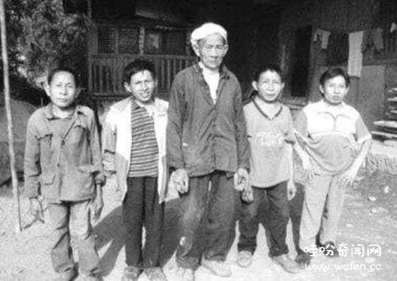 江苏矮人家族