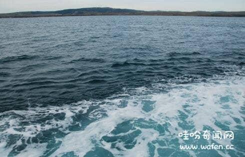 世界上最小的海是什么海