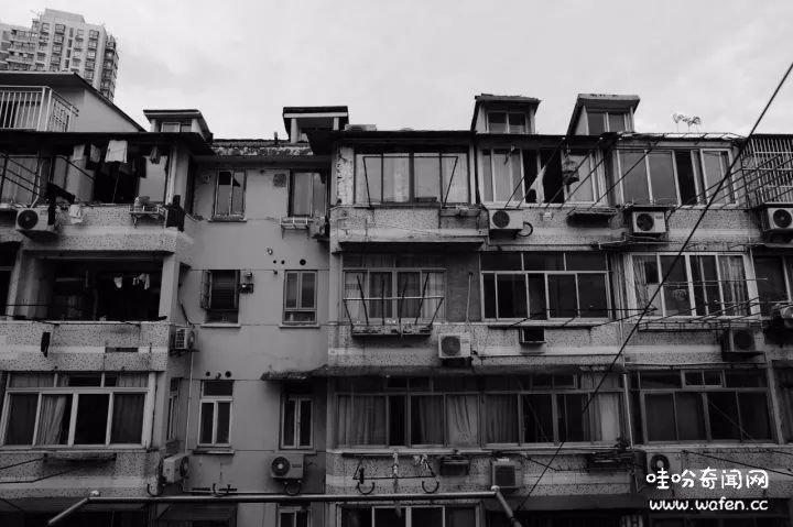 上海杀妻藏尸案,奇闻,奇闻异事,冻妻案