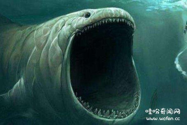海底,奇闻,奇闻异事,海底9万米