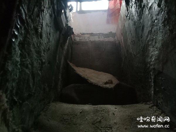 变态55岁光棍男 囚禁妙龄少女性侵24天 关在家里地下室