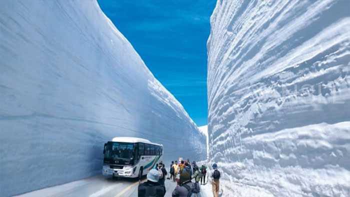 17米深的雪见过没?日本的这座雪城专门为游客挖了一条景观道路!