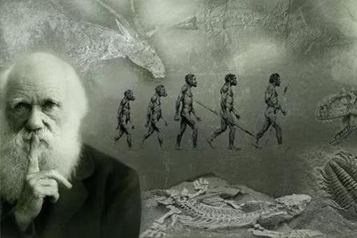 猿猴诉讼案的经过是怎样的?达尔文的进化论竟然被告了