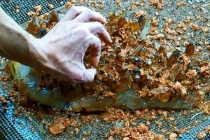 野外发现一块神奇的土块,把它冲洗干净后发现是异常漂亮的水晶